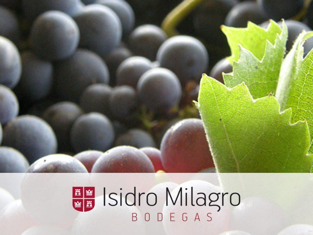 Vinos Tempranillos Bodegas Isidro Milagro