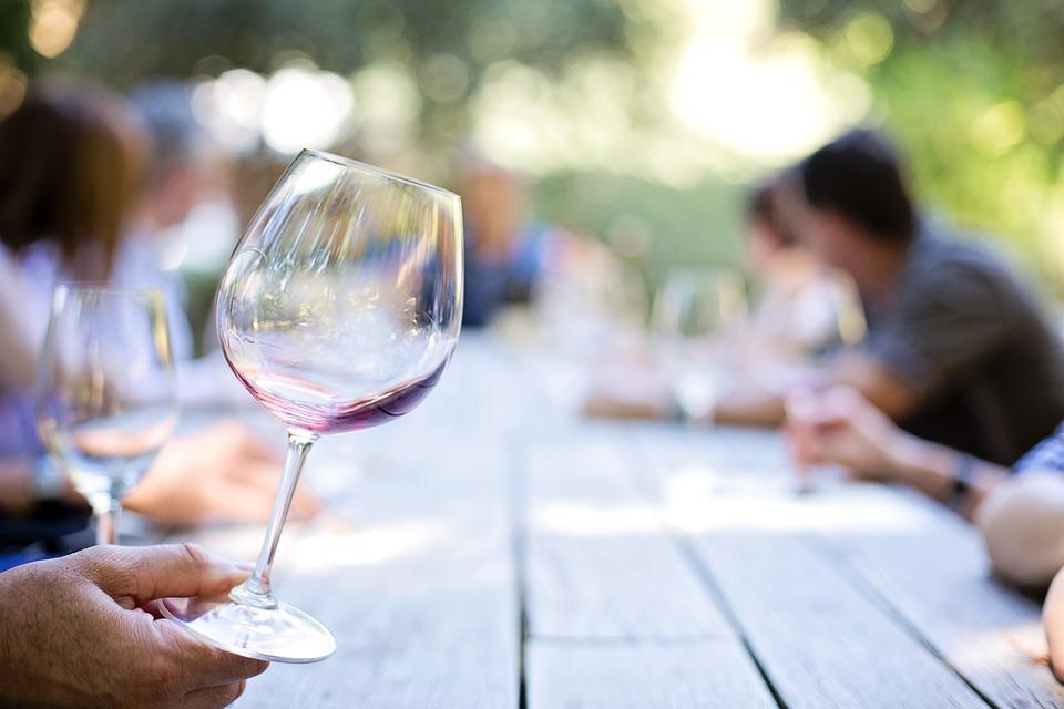 consejos para catar vinos